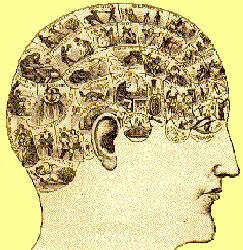 Sélection de livres sur le syndrome d'Asperger