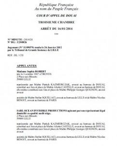 Décision de la Cour d'appel de Douai (a format PDF)
